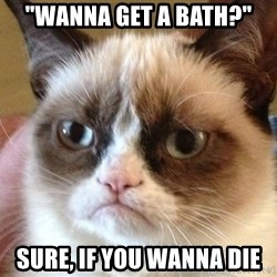 "Angry Cat Meme - ""wanna get a bath?""  sure, if you wanna die"