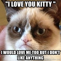 "Angry Cat Meme - ""i love you kitty "" i would love me too but i don't like anything"
