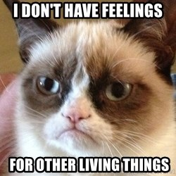 Angry Cat Meme - i don't have feelings  for other living things