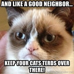 Angry Cat Meme - AND LIKE A GOOD NEIGHBOR... KEEP YOUR CATS TERDS OVER THERE!