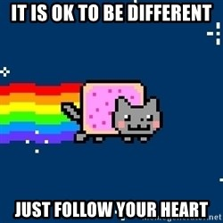 Nyancat - IT IS OK TO BE DIFFERENT JUST FOLLOW YOUR HEART