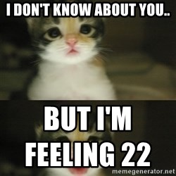 Adorable Kitten - i don't know about you.. but I'm feeling 22