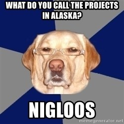 Racist Dawg - What do you call the projects in Alaska? Nigloos