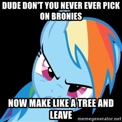 Rainbow Dash Fuck Off - dude don't you never ever pick on bronies  now make like a tree and leave