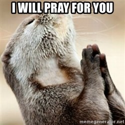 Praying Otter - I will pray for you