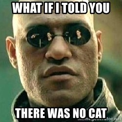 What if I told you / Matrix Morpheus - What if I told you  there was no Cat