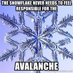 Special Snowflake meme - The snowflake never needs to feel responsible for the Avalanche
