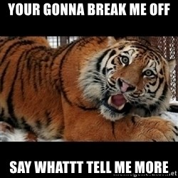 Sarcasm Tiger - Your Gonna Break Me Off  Say Whattt Tell Me More