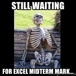 Still Waiting - Still waiting  for excel midterm mark...