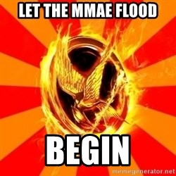 Typical fan of the hunger games - let the mmae flood begin
