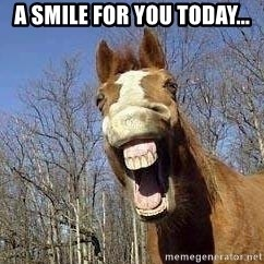Horse - A smile for you today...