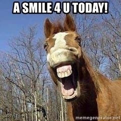 Horse - A smile 4 u today!