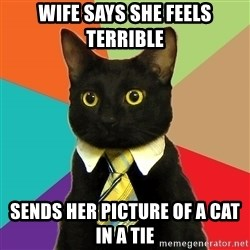 BusinessCat - Wife says she feels terrible Sends her picture of a cat in a tie
