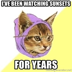 Hipster Cat - I've been watching sunsets for years