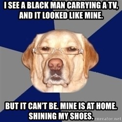 Racist Dog - I see a black man carrying a TV, and it looked like mine.  But it can't be. Mine is at home. Shining my shoes.