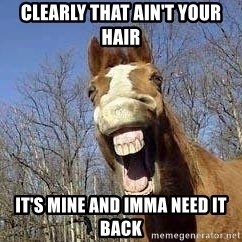 Horse - Clearly that ain't your hair It's mine and imma need it Back