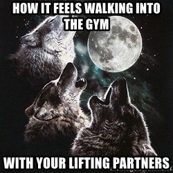 Lone Wolf Pack - How it feels walking into the gym With your lifting partners