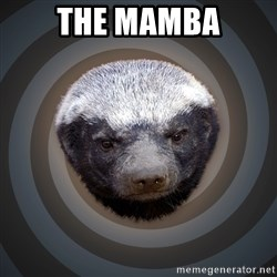 Fearless Honeybadger - the mamba