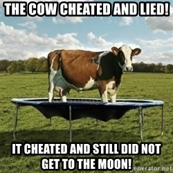 Unimpressionable Cow - The cow cheated and lied! It cheated and still did not get to the moon!
