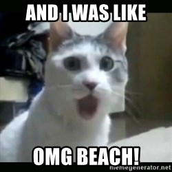 Surprised Cat - And I was like OMG Beach!