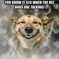 Original Stoner Dog - you know it 420 when the rez dogs are talking!