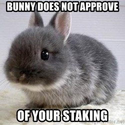 ADHD Bunny - Bunny does not approve of your staking