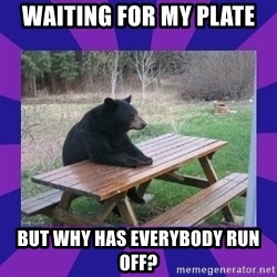 waiting bear - waiting for my plate but why has everybody run off?