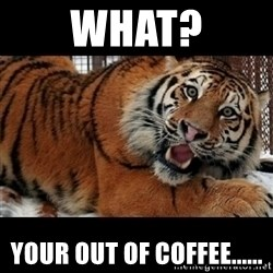 Sarcasm Tiger - What? Your out of Coffee......