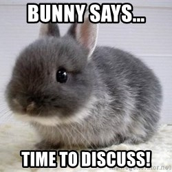 ADHD Bunny - Bunny says... time to discuss!