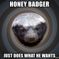 Fearless Honeybadger - Honey badger just does what he wants
