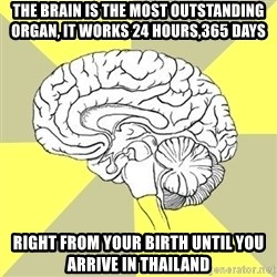 Traitor Brain - The brain is the most outstanding organ, It works 24 hours,365 days right from your birth until you arrive in Thailand