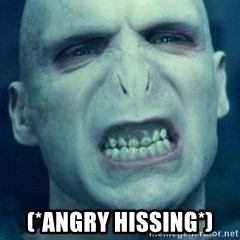 Angry Voldemort -  (*angry hissing*)