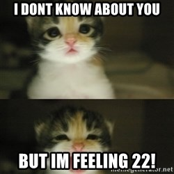 Adorable Kitten - I DONT KNOW ABOUT YOU BUT IM FEELING 22!