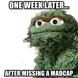 Sad Oscar - one week later... after missing a madcap