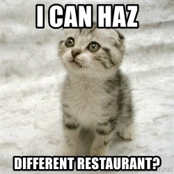Can haz cat - I CAN HAZ DIFFERENT RESTAURANT?
