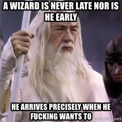 White Gandalf - a wizard is never late nor is he early He arrives precisely when he fucking wants to