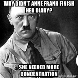 Hitler - Why didn't Anne Frank finish her diary? She needed more concentration