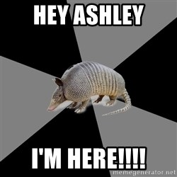 English Major Armadillo - Hey Ashley  I'm here!!!!