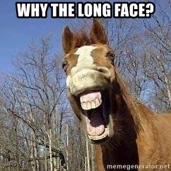 Horse - why the long face?