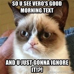 not funny cat - So U see Vero's Good Morning text and U just gonna ignore it!?!