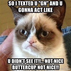 "not funny cat - So I texted U ""GN"" and u gonna act like U didn't see it!!... Not nice Buttercup, not nice!!"