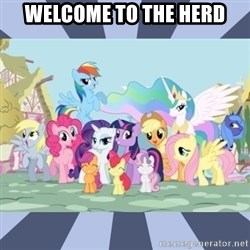 MLP - WELCOME TO THE HERD