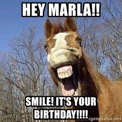 Horse - Hey Marla!! Smile! It's Your Birthday!!!!