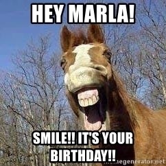 Horse - Hey Marla! Smile!! It's Your Birthday!!