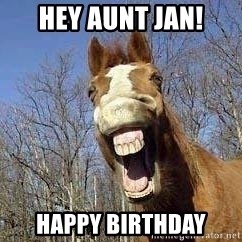 Horse - Hey Aunt Jan! Happy Birthday