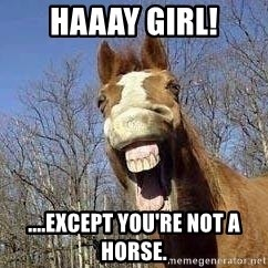 Horse - Haaay girl! ....except you're not a horse.