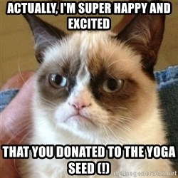 not funny cat - Actually, I'm super happy and excited that you donated to the yoga seed (!)