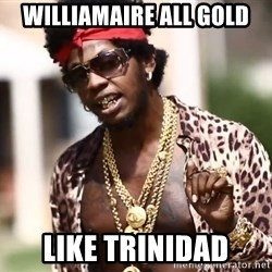 Trinidad James meme  - Williamaire All Gold Like Trinidad