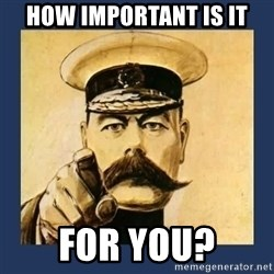 your country needs you - HOW IMPORTANT IS IT FOR YOU?