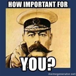 your country needs you - HOW IMPORTANT FOR YOU?